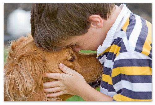 Аллергия на домашних животных.
