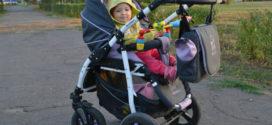 Детская коляска Verdi Sonic 2 в 1 — красивая, удобная и доступная по цене